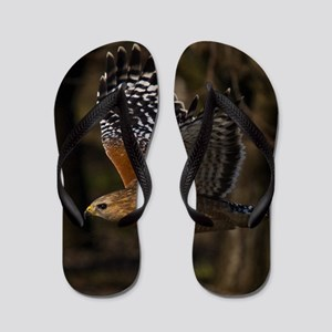 (15) Red Shouldered Hawk Flying Flip Flops